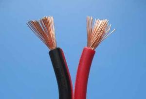 特种电缆发展现状